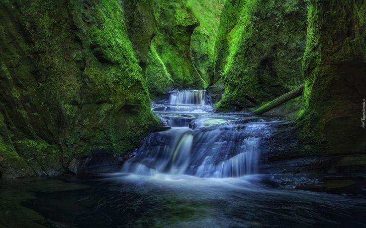 Edycja Tapety: Wąwóz Finnich Glen z wodospadem płynącym do rzeki Carnock Burn
