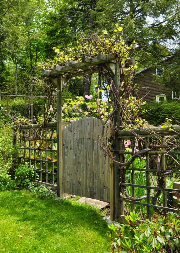 Three dogs in a garden duff donna evers part 3 the for Rustic garden gate designs