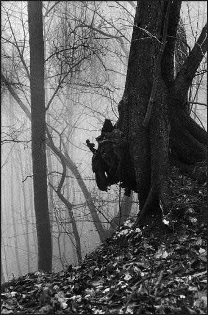 Henri Cartier-Bresson - Switzerland. Appenzell. 1975