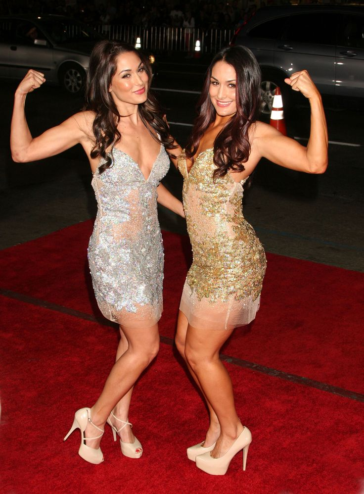 288 Best Nikki  Brie Bella Images On Pinterest  The -7864