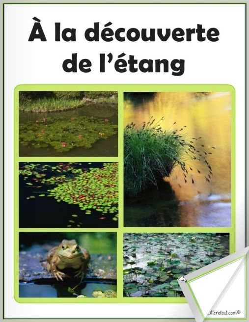 Livre numérique À la découverte de l'étang Dans ce livre, les élèves sont invités à découvrir un étang, ses animaux et ses plantes. Ce livre est offert en deux versions: avec et sans narration.