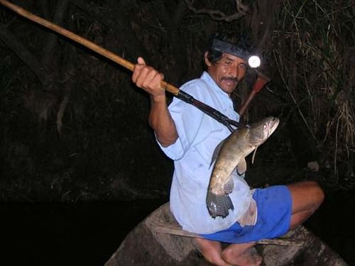 NativeNewsToday.com » » Indian Spear Uses The spears of ...