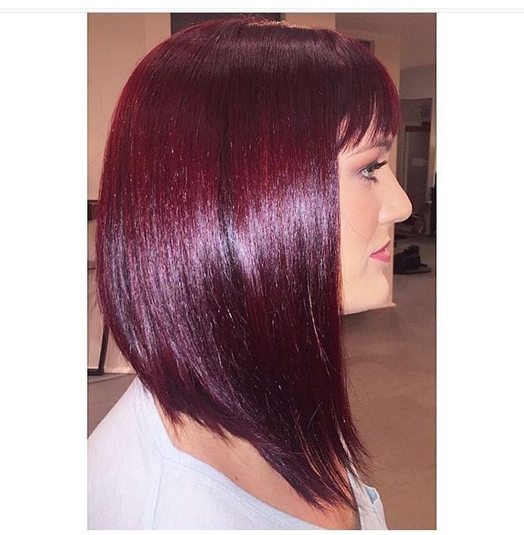 Best 25+ Red violet hair ideas on Pinterest