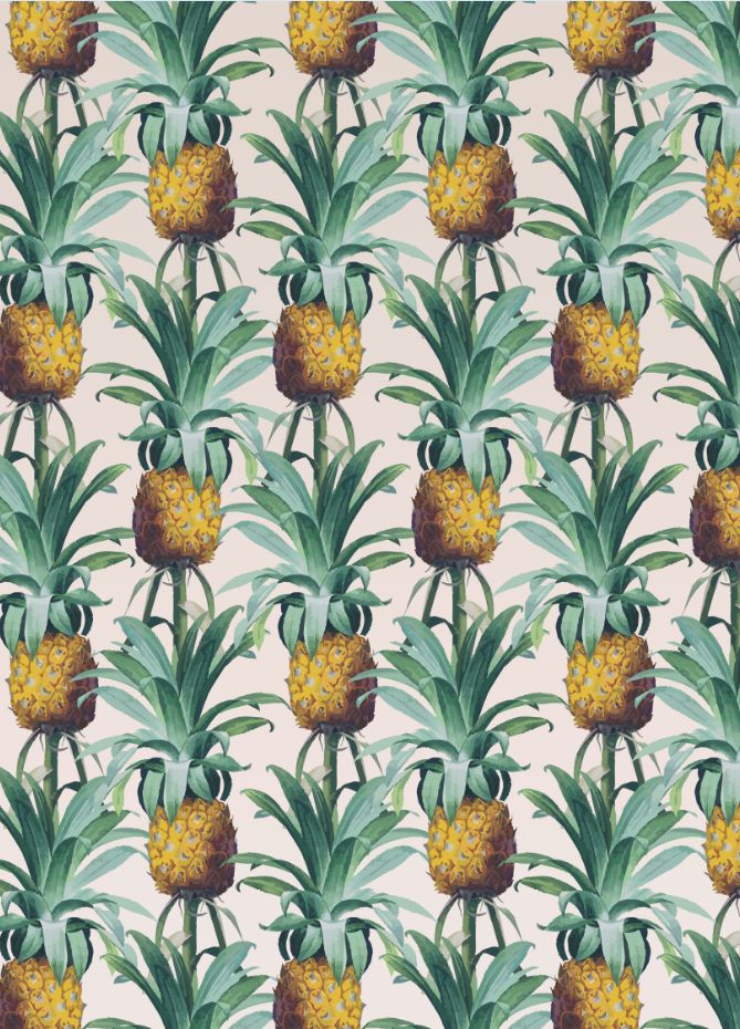 322 Best Images About Pineapples On Pinterest
