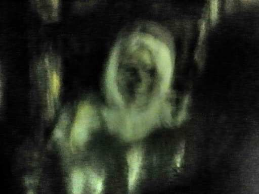 Spirited Grove Ghost Picture!