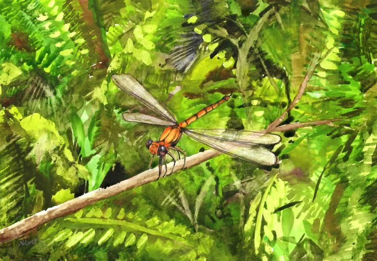 """""""Dragonfly"""" by Amanda Hunt. Paintings for Sale. Bluethumb - Online Art Gallery"""