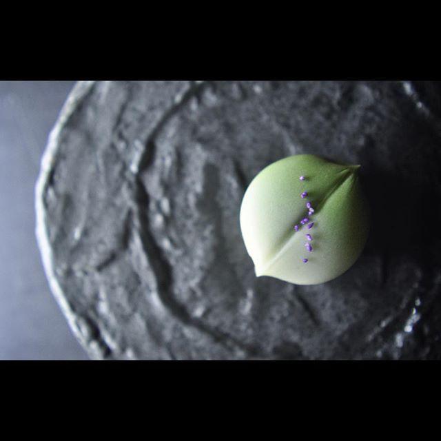 """一日一菓 〜秋の七草シリーズ〜 「萩」 煉切製  wagashi of the day """"Bush clover""""  本日も秋の七草シリーズでご紹介します。 第二弾「萩」です。  先日ご紹介した茶巾絞りにて葉を模し、 萩の花を色付けした真挽粉にて表現しました。  #和菓子 #和菓子職人 #一日一菓 #wagashi #japanesesweets #Bushclover #萩 #三堀 #伝統  #japan #sweet #cake #artist #candy  #art"""