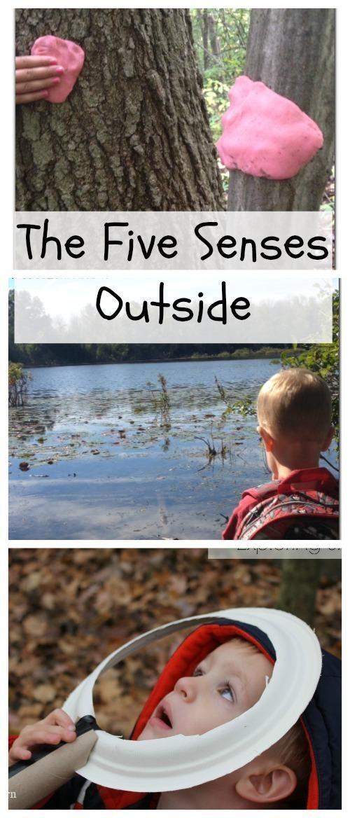 Five Senses Activities for Kids Outdoors!