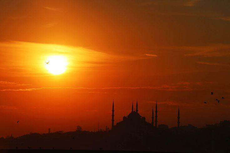 7 Best Queco Studio Istanbul Turkey Images On Pinterest