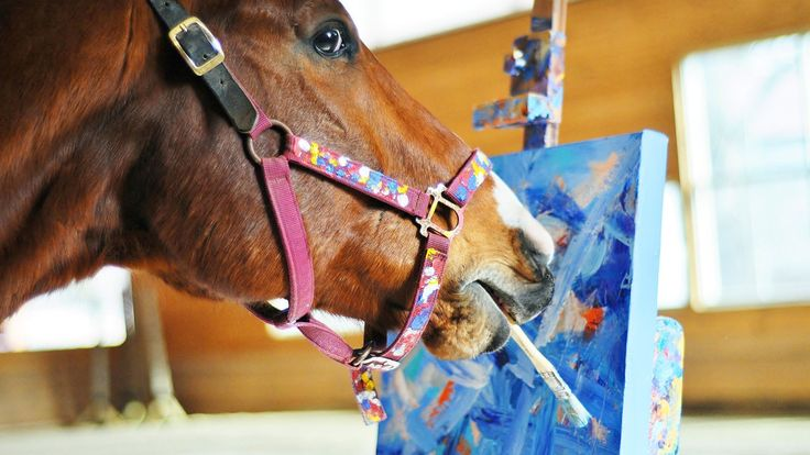 Promis � la mort, ce cheval de course s'essaye � la peinture... et ses toiles vont lui sauver la vie !
