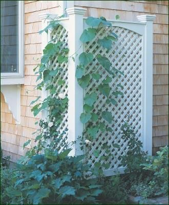 17 Best 1000 images about Lattice Projects on Pinterest Planters