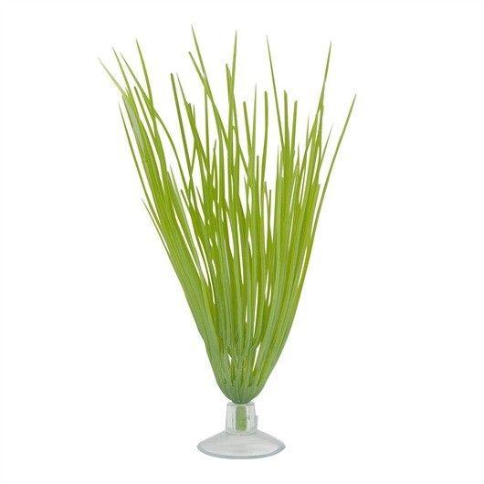 Plantas Plasticas con Ventosa Haigrass  MARINA 12,5 cm - #FaunAnimal Los colores reales no se desvanecen y son totalmente seguros para todos los habitantes del acuario.