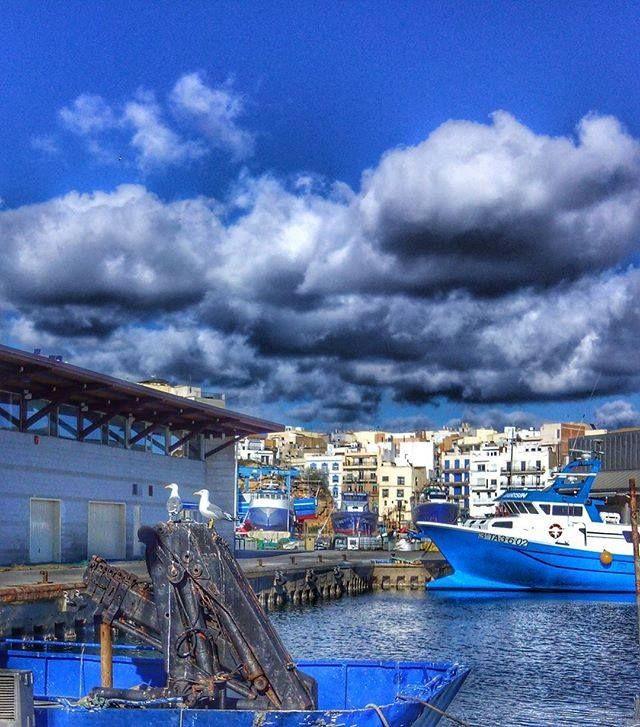 #Photo @jo_anna__ #ametllademar #ametllamar #terresdelebre #tarragona #catalunya #catalogne #cataluña #catalonia #pesca #fishing #pêche #platja #playa #plage #beach #estiu #verano #été #summer #sun #vacances #vacaciones #holiday #traveling #viajes #travel #visit #eatheword #vamosdeviaje #voyage #escapadas #experiences #traveller #food #gastronomia #gastronomy #happyholidays #mediterrani #mediterraneo #mediterranean #visiting #vacation #trip #tourism #tourist #reservadelabiosfera
