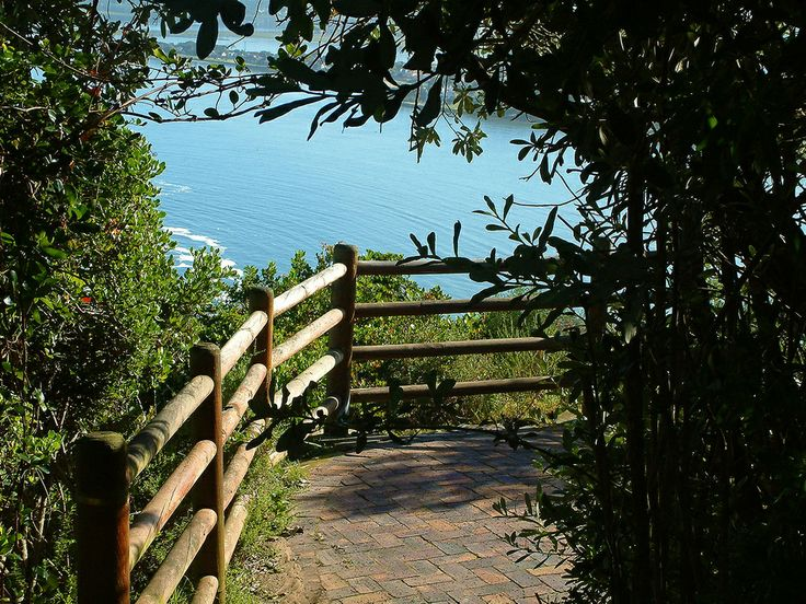 The pathways on the top of the Heads at Knysna, South Africa.