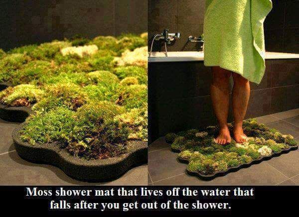 A great way ground yourself in your home
