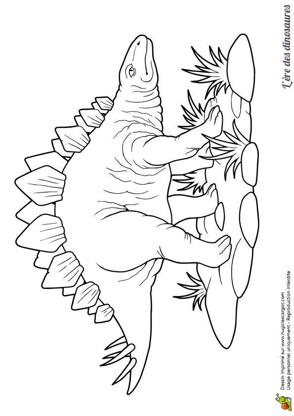 Les 63 meilleures images du tableau coloriages de dinosaures sur pinterest dinosaures - Modele dessin dinosaure ...