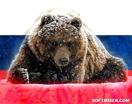 Почему именно медведь стал символом России! » Женский Мир