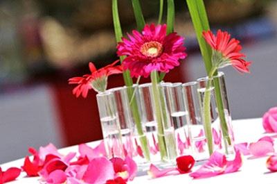 decoration de table/presentation cocktail