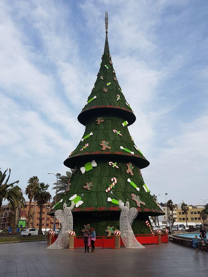 Warum ich mich in Gran Canaria im Winter verliebt habe #travel #reisen