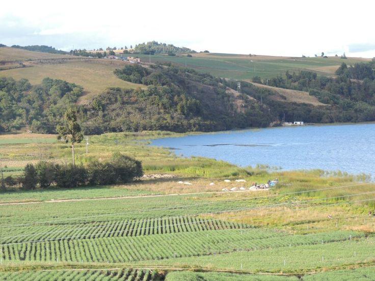 Lago de tota, Boyaca Colombia