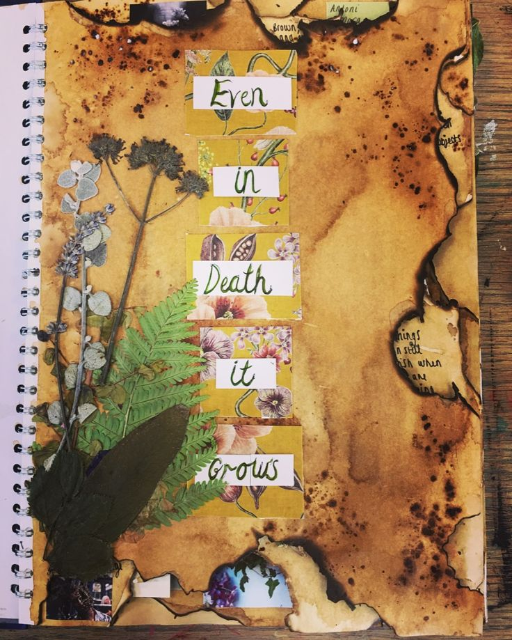 """My title page for my year 13 project, """"Even in death it grows"""""""