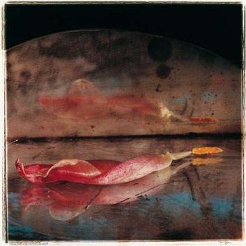 Natura morta nº 186, 1991  Copia actual  Copia cromogénica 46x46 cm.  © Toni Catany