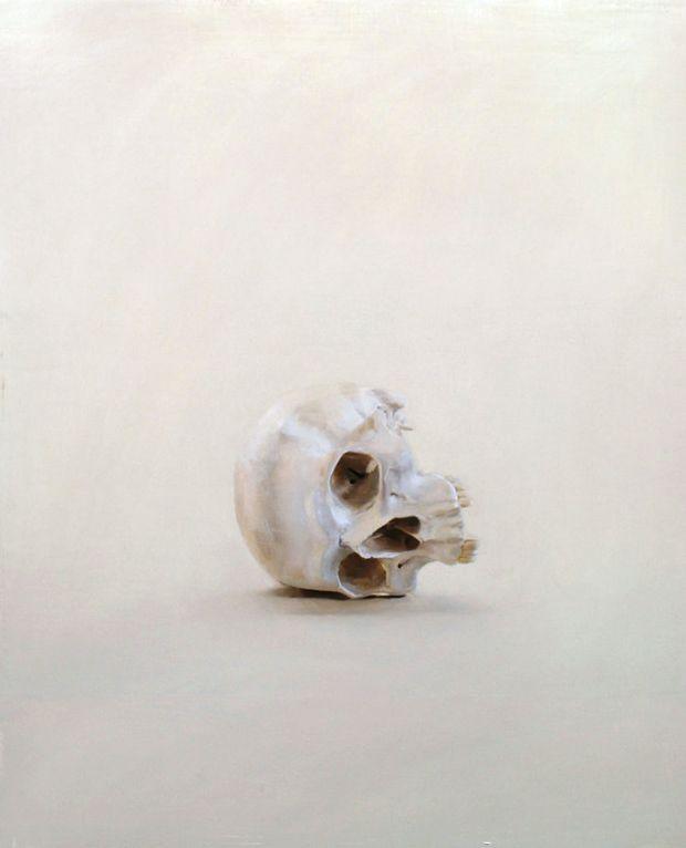 Simple Beautiful, Fallen Skull, Fabulous Skull, Skull Curio, Skull Candies, Anatomical Art, Skull Alone, Skull Book, Weights Loss