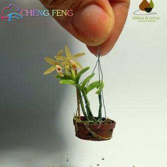 100 Pcs Seeds Mini Bonsai Orchid Seeds Indoor Home Miniature Flower Pot Garden Plants Four Seasons Beauty 2016 Rare Flowers Gift