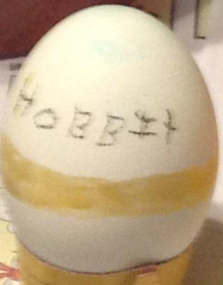 Hobbit ring egg