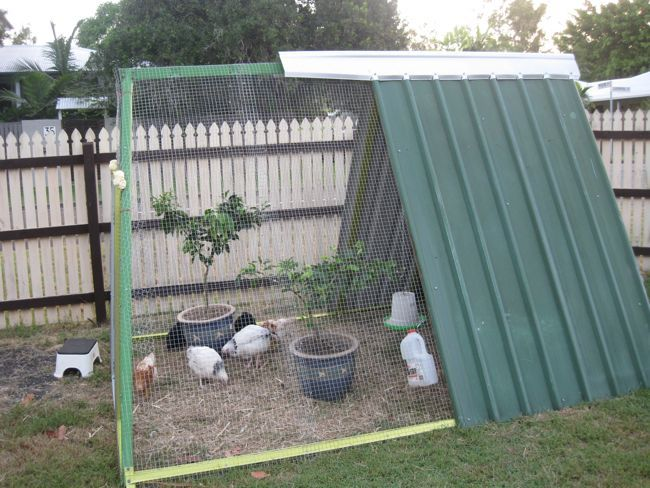 How an old swing set became a delux chicken residence...