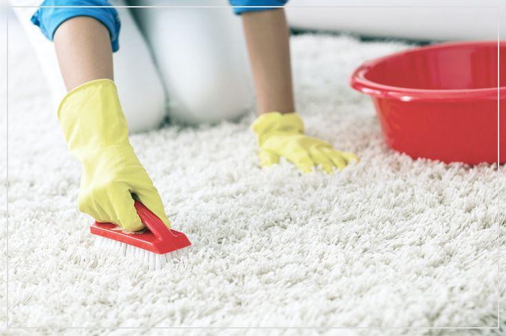 Teppich reinigen & Flecken entfernen - so geht´s #benuta #teppich #diy#interior #rug