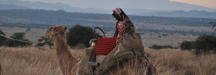 Last Minute Special – Kenya