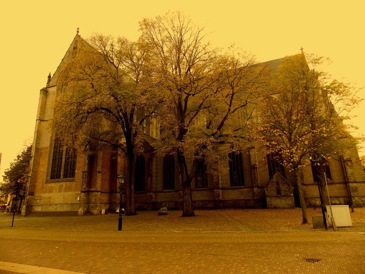 Elf church