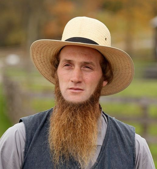 Young Amish man with reddish - brown beard.