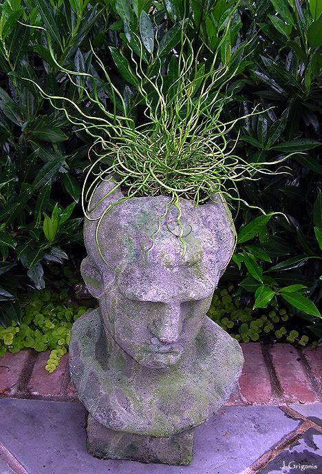217 best images about head planters on pinterest gardens medusa head and sculpture - Medusa head planter ...