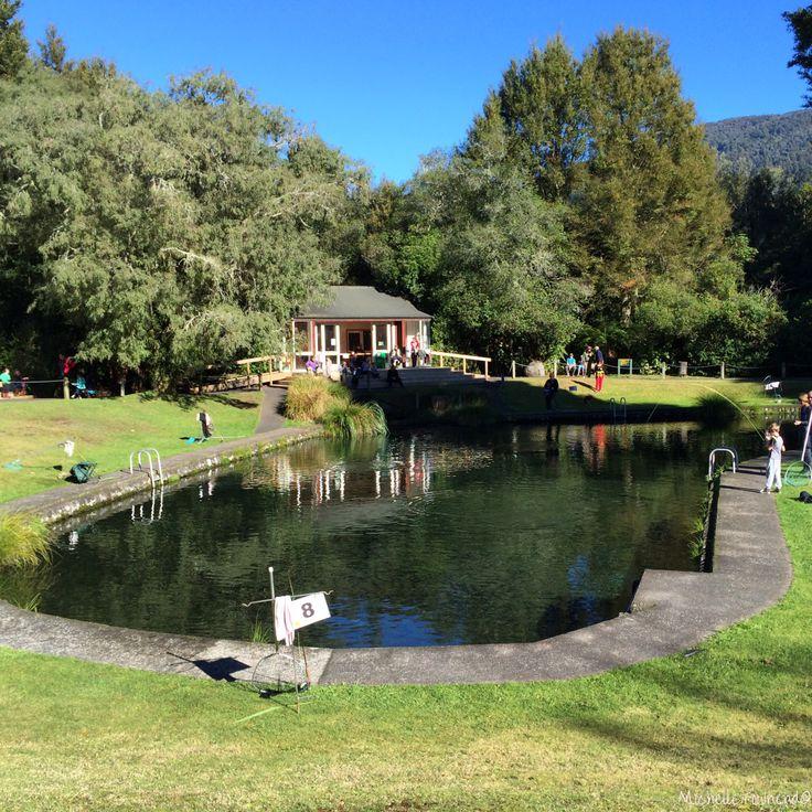 Tongariro Trout Centre | Turangi | NZ | MichelleTownend©