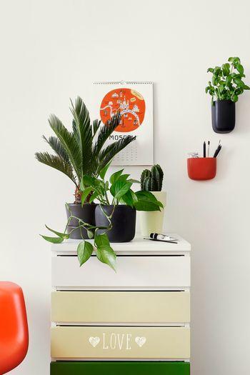 Pomysł na komodę - paleta Growth, Tikkurila Color Now 2017