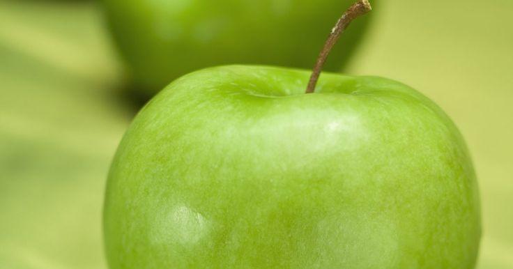 Comendo maçãs que não estão maduras. Desde o jardim do Éden até os contos de fadas, a maçã é uma imagem icônica. Elas são usadas para fazer tortas, geleias, bolos, molhos e bebidas, assim como produtos não comestíveis, como o pot-pourri. Embora pobre em vitaminas, a maçã é doce, crocante e cheia de água quando madura. Comer essa fruta enquanto verde é um erro comum remediado pelo ...