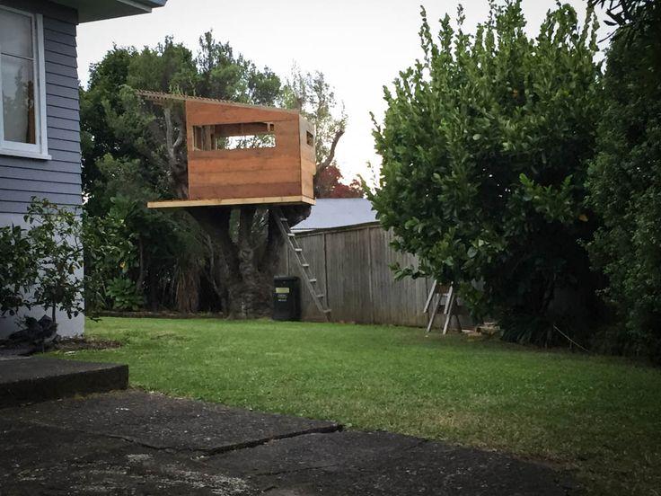 Tree hut in willow tree. Work in progress!