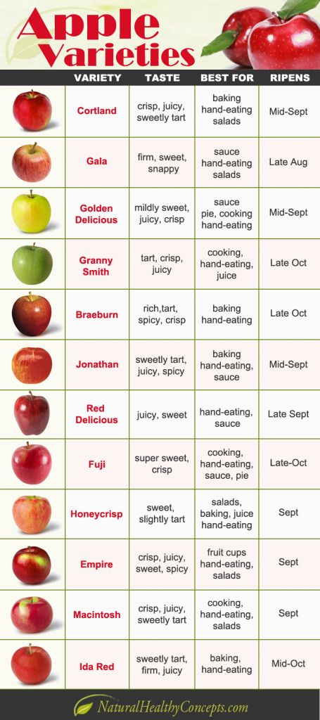 apple varieties