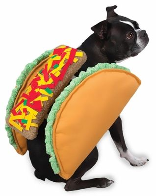 """The Taco #Costume is the deliciously fun way for #dogs to dress up for Halloween. Soft plush dog costume features two plush taco """"shells"""" with a berber filling."""