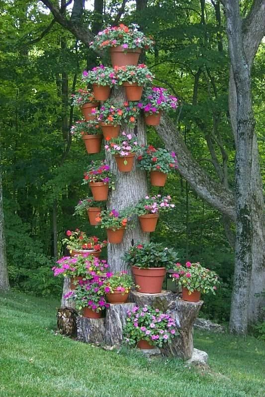 Dead tree, turned into flower holder, genius!