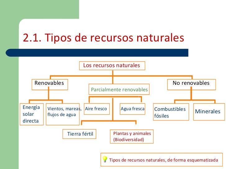 agotamiento-de-los-recursos-naturales-6-728.jpg?cb=1265555729