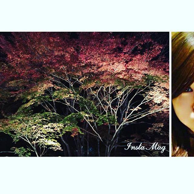 2016/11/23 09:31:07 miiiii.0202 大好きな京都✨❤️ライトアップ綺麗だったなー✨^ ^ 行きたいと思ってすぐ行けるのが本当に嬉しい🎶 . . . 綺麗なものを見たりオシャレしたい…💕. 海外にも行きたい! 日本にも綺麗な場所は沢山ある✨😊 1度きりの人生‼︎楽しく生きたい🎶 スマホビジネスで自分も周りも幸せに…( ᵘ ᵕ ᵘ ⁎)⭐️. したい事に欲しい物、借金など…沢山あっても収入増やせば自由✨💕 スマホ一つで皆と協力して稼げる方法教えます^ ^ 徹底的に私がサポートします💕 聞くだけでも損はなし‼︎ まずはLINEID:@bcb0370oまでご連絡下さい✨ もしくはトップからワンクリックで登録可能です。  #Rady#副業#ブライダル#美容#借金#ママ#マタニティ#お仕事#スマホ#ビジネス#ブランド#おしゃれ#仲間#友達#旅行#結婚式#ネイル#エステ#ヘアアレンジ#メイク#写真#自分磨き#投資#女子#スイーツ#ダイエット#ライトアップ#紅葉#貴船#京都  #美容