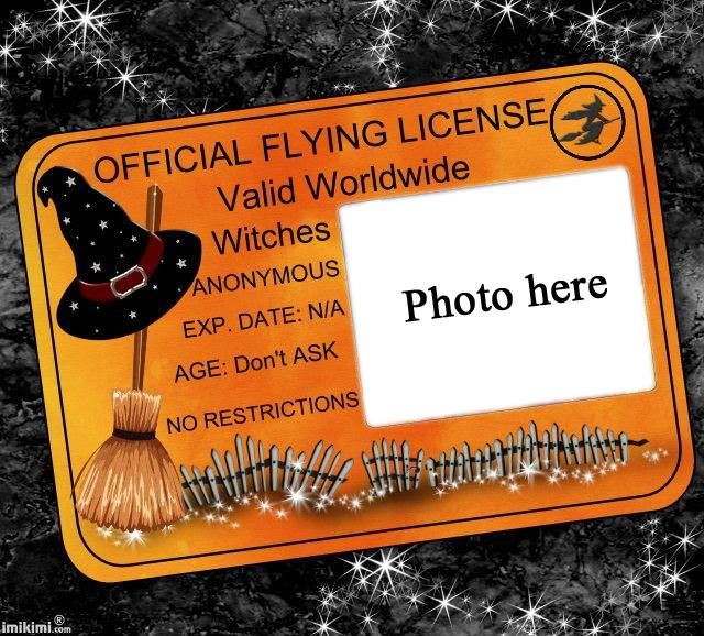 .free printable halloween official witches flying license