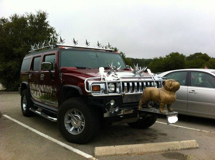This is somebody's vehicle.: Interesting Vehicles, Shops Owners, Shoes Fit, Cars, Douchiest Vehicles, Chrome Swan, Bronze Bulldogs, Hummer Swan, Funny Comment