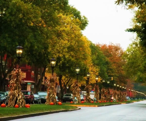 7 Top Tips For Throwing A Grand Party In A Small Home: 17 Best Images About Wellsboro, PA On Pinterest