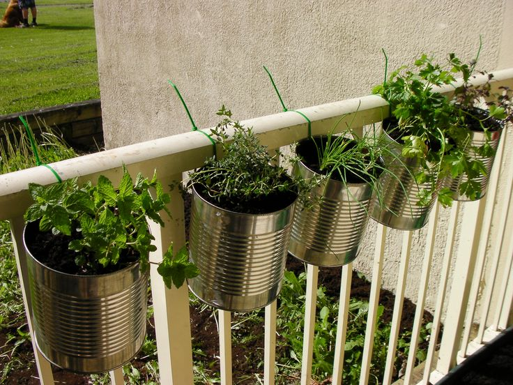 Herb Garden Planter Ideas Part - 43: Herbs In Coffee Cans, Hung With Zip Ties. I Take No Credit For This. Outdoor  PlantersDiy PlantersBalcony ...