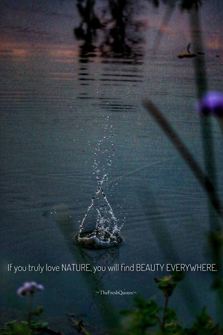Beauty of Nature Quotes & Slogans with Images