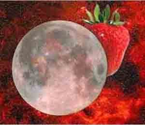 Celebrating the strawberry moon.  The full moon in June was named after the delectable fruit by many Native American tribes.  We Wiccans call it the Dyad Moon and focus our rituals on balancing our spiritual and physical desires; reminding ourselves of the difference between wants and needs.